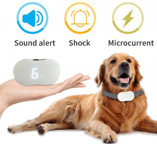 Dogsfuns Bark Collar for Dogs