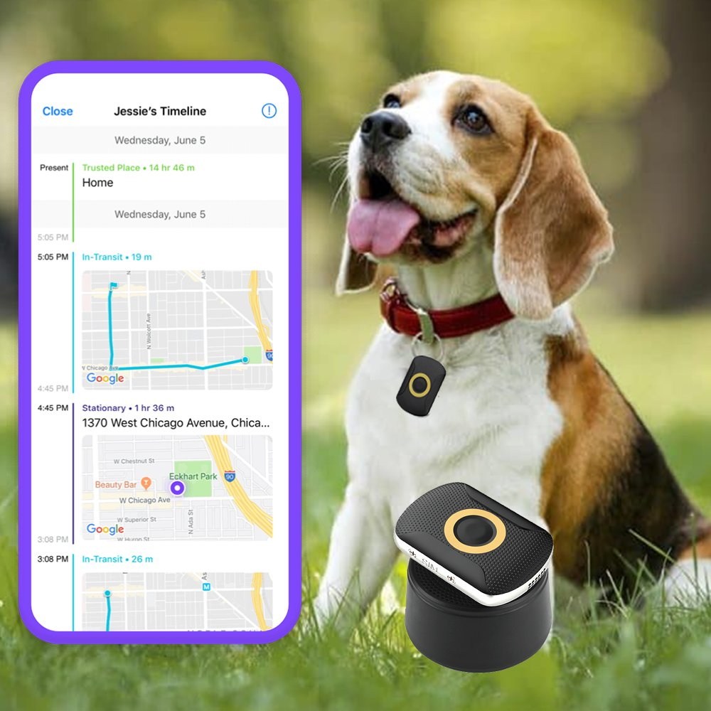 dogsfuns gps trackers for kids