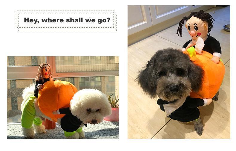 dog costumes for christmas